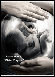 Coming Full Circle by Laurel D. Rund